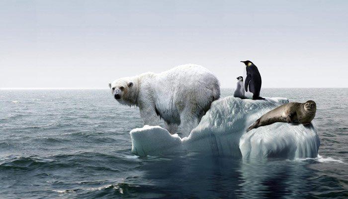 Incalzirea globala – o analiza surprinzatoare