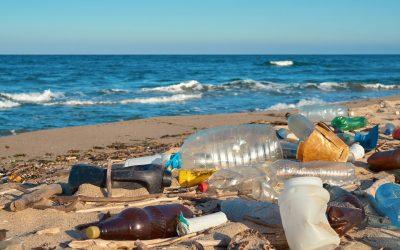Cum poti stopa utilizarea excesiva a plasticului